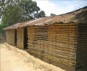 escuela madidi